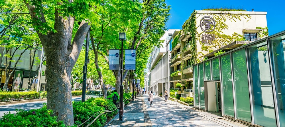 Image of Omotesando